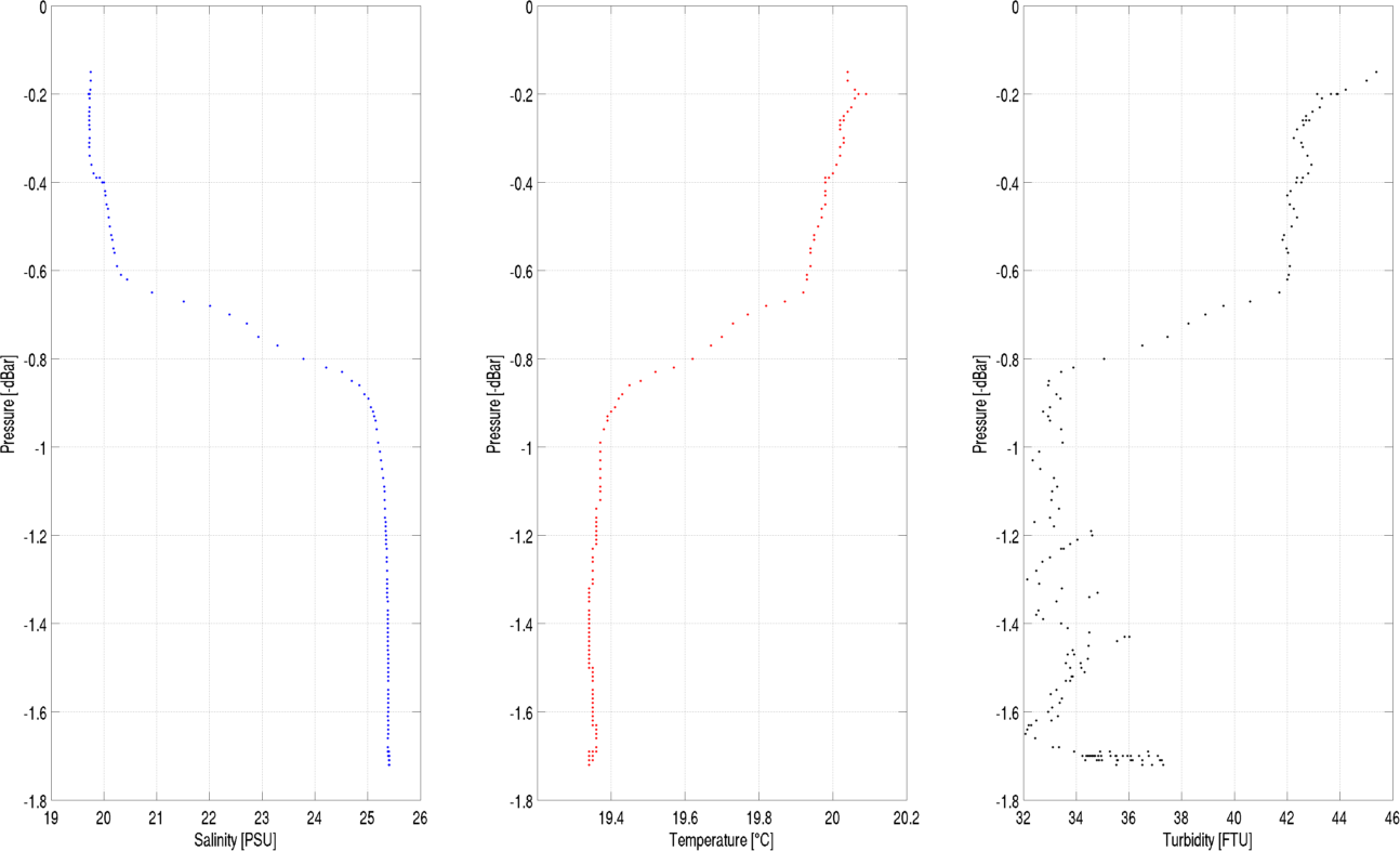 Sample CTD data set illustrating stratification in the YR Estuary.png